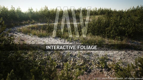 MW INTERACTIVE FOLIAGE