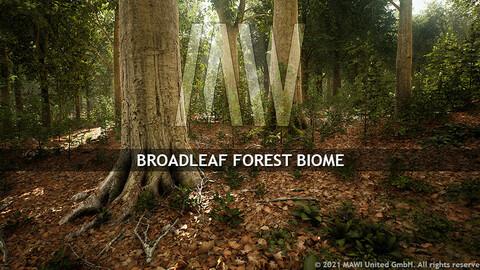 MW BROADLEAF FOREST BIOME