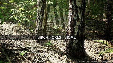 MW BIRCH FOREST BIOME