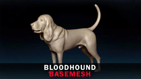 Bloodhound Basemesh 3D model