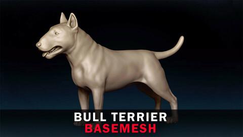 Bull Terrier Basemesh 3D model