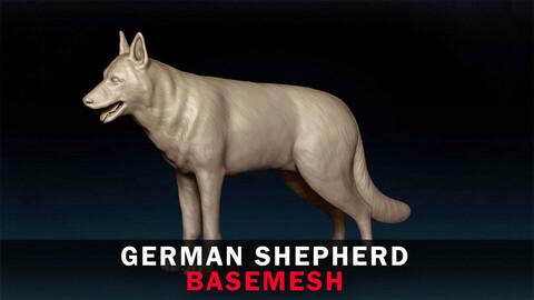 German Shepherd Basemesh 3D model
