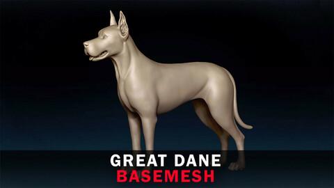Great Dane Basemesh 3D model