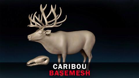 Caribou Basemesh 3D model