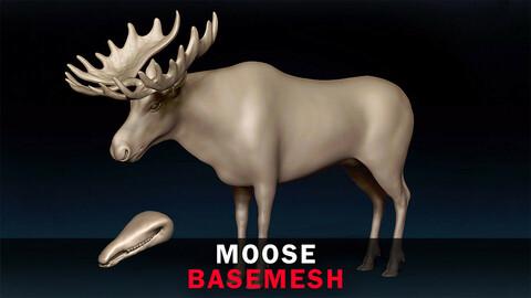 Moose Basemesh 3D model