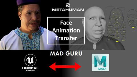 Metahuman Face Animation Tools