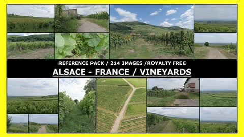 ALSACE - VINEYARDS  / Photo Reference / 214+ images