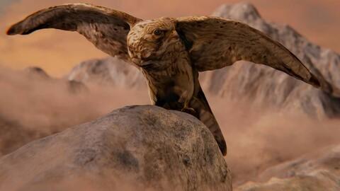 Photorealistic Female Kestrel Bird
