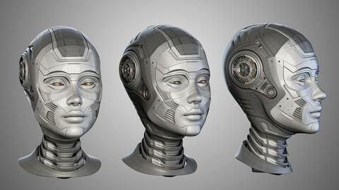 Cyborg Female Head (Advanced 3d Model)
