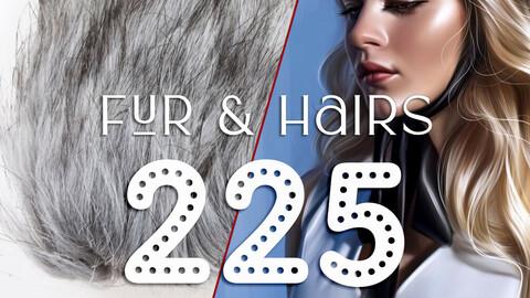 225+ Hairs Brushes & Fur Brushes - Procreate Brushes, Strands brushes, Loose brushes, Lashes brushes, Curls brushes, Braids brushes