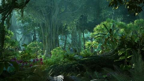 Pristine Rainforest 03