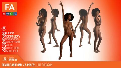 Female Anatomy | Luna Corazon 5 Various Poses | 40 Photos