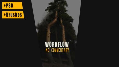 Workflow - video process