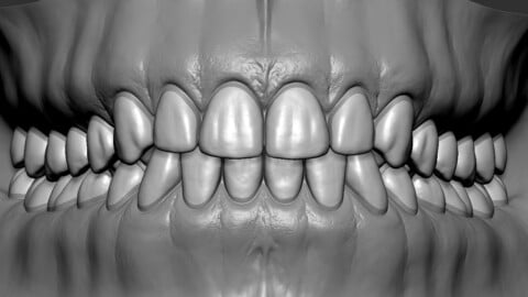 High Poly Mouth