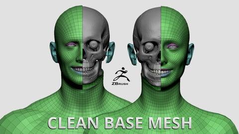 Clean Base Mesh