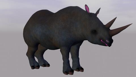 black rhino Diceros bicornis