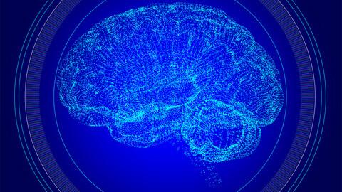 Cyber Brain Artificial -NFT animation