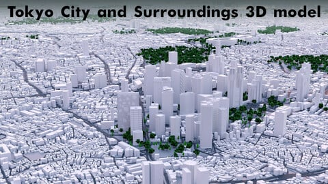 Tokyo City and Surroundings 3D model