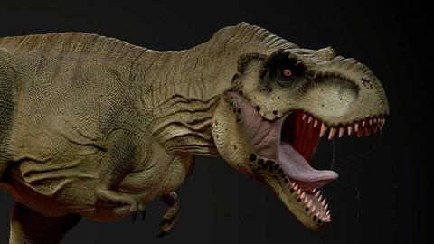 T-Rex Base Mesh
