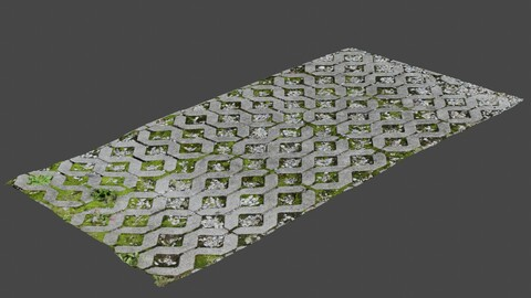 Stone Pathway 1 - Photoscan