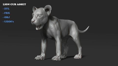 Lion cub Asset