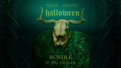 Halloween Bundle 10 jpg images / Scary spooky fantasy pictures