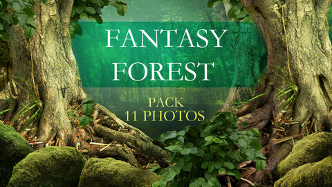 Fantasy forest 11 photos pack / Fairy tale landscapes and backgrounds