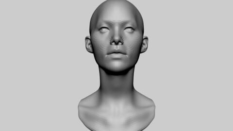 Female Head Basemesh 02