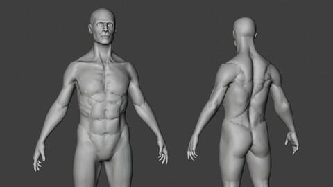 Male Body Sculpt