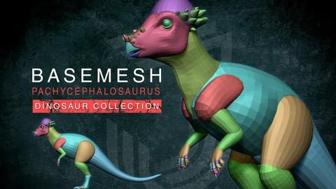 Basemesh Pachycephalosaurus