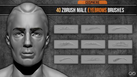 40 ZBRUSH MALE EYEBROWS BRUSHES