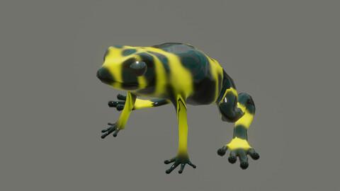 frog dendrobates leucomelas