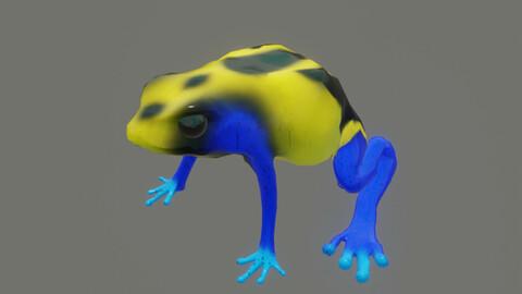 frog Dendrobates tinctorius