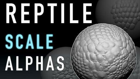 Reptile Scale Alphas 16-pack