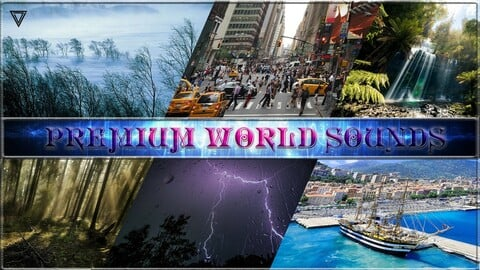 Premium World SFX. Game SFX Asset. Unreal Engine 4.27