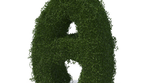 Boxwood symbol A