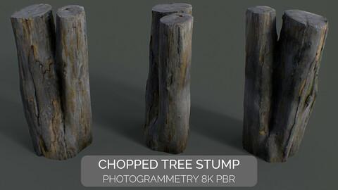 Chopped Tree Stump [Photogrammetry 8K PBR] High-Poly + Low-Poly