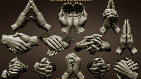 12 Male hand poses
