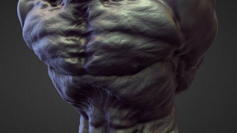 TORSO9 high poly sculpt