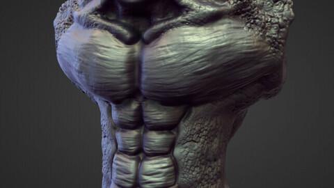 TORSO23 high poly sculpt
