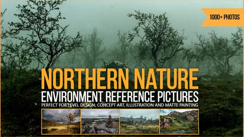 1000+ Northern Nature Environment Reference Pictures