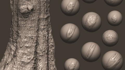 Z brush - Trunk Detail Brushes 1 Volume