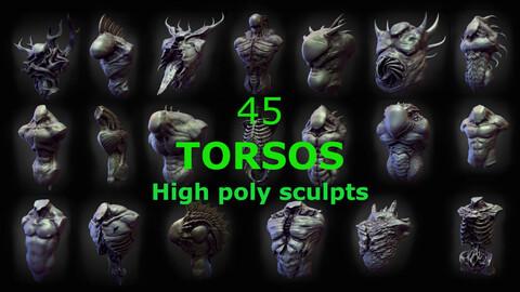 45 TORSOS high poly sculpts pack 3D model