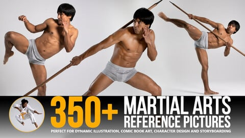 350+ Martial Arts Reference Pictures