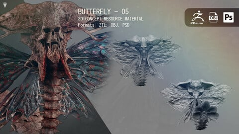 Butterfly 05 - Resource Material
