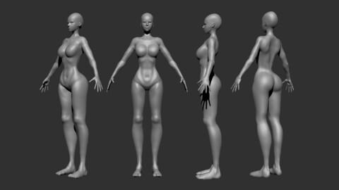 Female Body Base Mesh