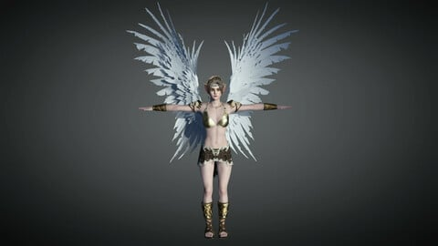 Fantasy Female Character 08 ( The Valkyrie )