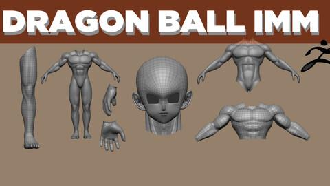 IMM DRAGON BALL MALE BODY