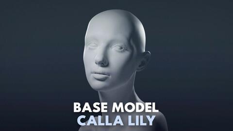 Calla Lily Base Model