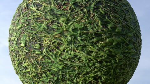 Grass 15 PBR Material